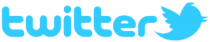 Twitter - Phreedom Technologies IT Services